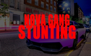 Stunting-Cover-Art